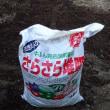 菜園に自家製腐葉土と堆肥を入れて再度天地返ししました(*^^)v