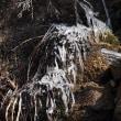 六甲山上はまだ凍っています・・小さな流れ
