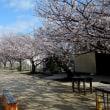 春の陽気に包まれた4月最初の日
