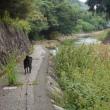 7歳にして初の川遊び