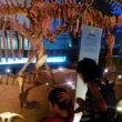 恐竜博物館に行ってきました
