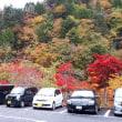 【自適に実年】紅葉と温泉三昧の兄弟癒し旅