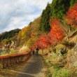 碓井湖で紅葉狩り
