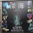 「深海2017」/日本科学博物館