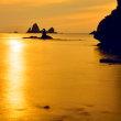 黄金の島(大田子)
