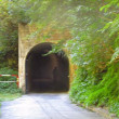 黒部渓谷トロッコ電車の旅