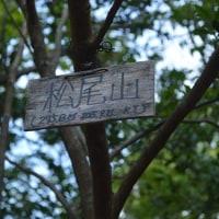 まち歩き西0967 松尾山 山頂 275m