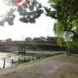 ぶらりんちょ、伏見港公園