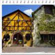 ヨーロッパ木組みの家巡り11フランス・コルマール2