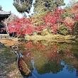 永観堂と高台寺