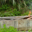 光明寺&含富里霊園・・・護摩木供養を開催した