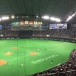 札幌ドームで野球観戦
