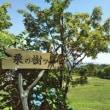 でっかいどう。北海道の旅 15日目 日本ハム栗山監督に会った