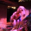 ジュラシック・ワールド展、フィールド・ミュージアムにて―シカゴ滞在記。