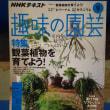 NHKテキスト『趣味の園芸』テキスト9月号!書店で買ってくださいね🎵