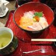 今日のお昼は府庁前の魚菊さん