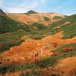 錦秋の鳥海山
