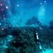 午後からダイビング。沖縄ダイビング 那覇シーマリン