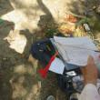 「新生町サロン・ひまわり」(2018/4//25)の活動「グランドゴルフ」・・・姶良市加治木町原の門公園