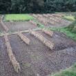 村づくり農林水産大臣賞の受賞