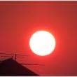 猛暑日の夕陽