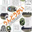 こぐま新聞2017年度秋号