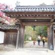晩秋・奈良の正暦寺