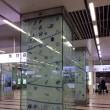 街ナカみどり  博多駅