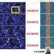 """ダークエネルギーの謎を解明できるか? すばる望遠鏡""""HSC""""を使った精密宇宙論のはじまり"""