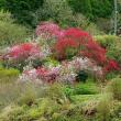 桃の花見て季節が動く