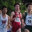 第262回日体大長距離競技会10000m結果報告