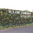 都市緑化はちおうじフェア   庭園コンテスト