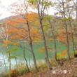 平成29年10月18日(水) 志賀高原で紅葉狩り♪