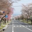 島本町議会で前代未聞の行動を取ったお粗末議員の8名(傍聴記)