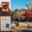 万葉文化館でワークショップ:木の実の額飾り