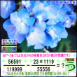 [う山先生・分数]【算数・数学】【う山先生からの挑戦状】分数629問目[Fraction]