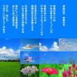 季節の空 季節の花