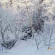『大雪山国立公園に佇む 秘湯糠平温泉 5日間』