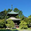 嵐山渡月橋嵯峨野散策とカワセミ