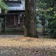 8日の散歩 ( 妙蓮寺から上御霊神社、十二坊蓮臺寺への雨散歩 )