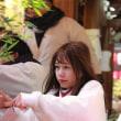 今宮戎神社2018えべっさん「福娘」画像 平成30年十日戎 福むすめ&ゑびすむすめ その50
