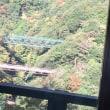 電車で箱根🚃