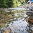 森と川の涼を求めて