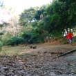 天王洲ランナー