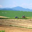 上富良野、麦畑と無人トラクター