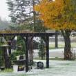 雪が降る ♪♪