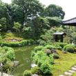 池の水浄化の取り組み 建仁寺の塔頭「両足院」