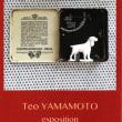 Teo YAMAMOTO テオ山本 13/10 - 25/10 2017