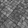 【埼玉県•棚田風景】〜静かな糧〜リサーチ•パフォーマンス