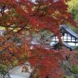 南河内の紅葉